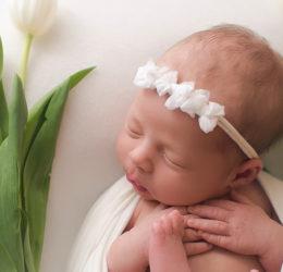 Летнее предложение «Суррогатное материнство с ооцитами анонимного донора»